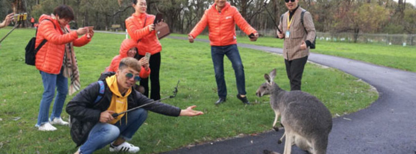 In pictures: Adelaide's largest ever incentive group visit