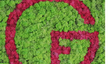Grimaldi Forum's ACT GREEN Policy produces record results