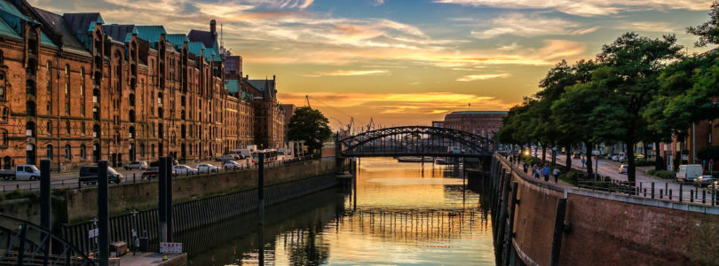 Hamburg to host world's largest stem cell conference