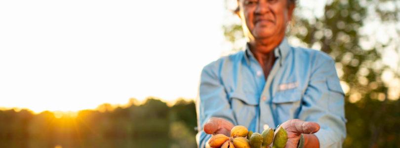 Indigenous food on the Darwin menu