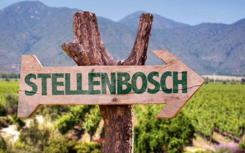 GM appointed to boost new DMO Visit Stellenbosch