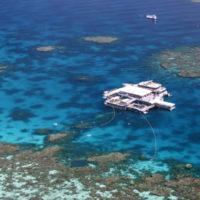 Quicksilver Pontoon, Agincourt Reef, Great Barrier Reef, QLD