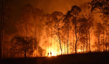 Australian Government pledges huge bushfire recovery fund