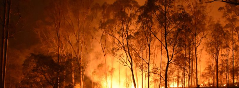 Australian Government pledges huge bushfire recovery fund