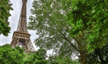 Paris tourism barometer suggests European air traffic could drop 48% in 2020