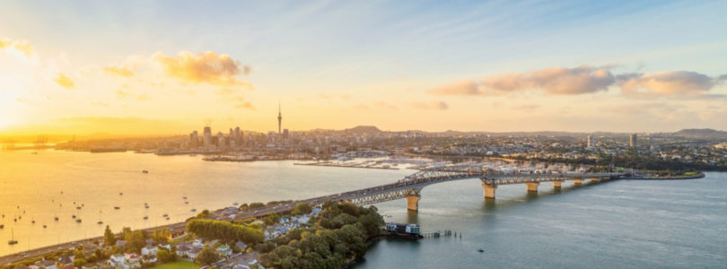 Auckland blueprint for recovery, as NZ opens for business