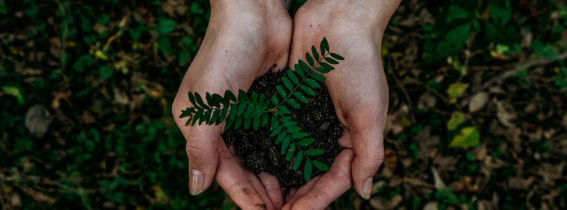 Positive Impact fundraising for event climate framework ahead of Earth Day